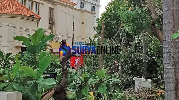Antisipasi Musim Hujan, DKRTH Surabaya Lakukan Pemotongan Ranting Pohon di Banyak Titik