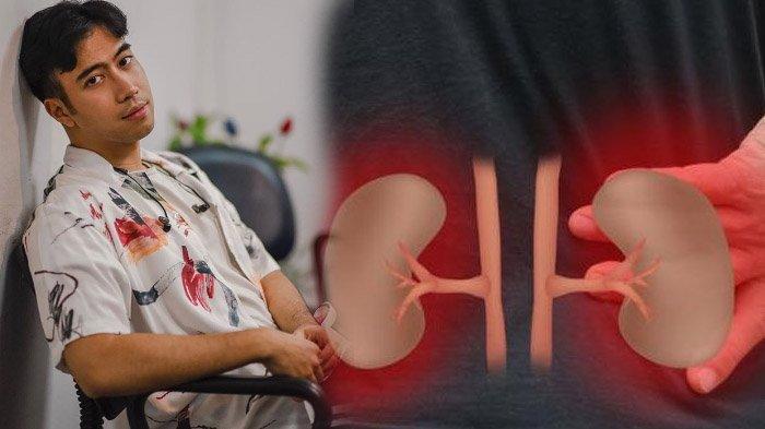 Pengertian Penyakit Kanker Ginjal Seperti Diidap Vidi Aldiano, Ketahui Tanda & Beberapa Penyebabnya