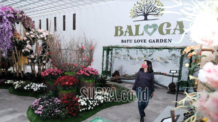 Batu Love Garden, Pesona Keindahan Bunga, Buah dan Sayuran di Desa Bumiaji Kota Batu