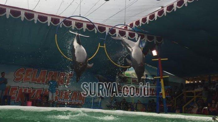 Ratusan Pengunjung Serbu Pembukaan Pentas Lumba-lumba di Kota Blitar