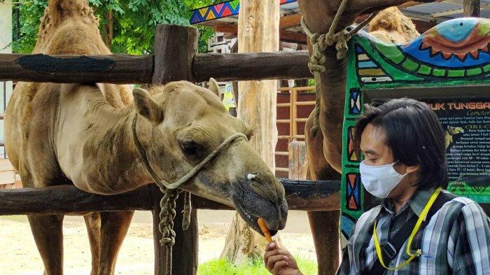 Libur Natal 2020, Maharani Zoo dan Goa Lamongan Masih Sepi Pengunjung
