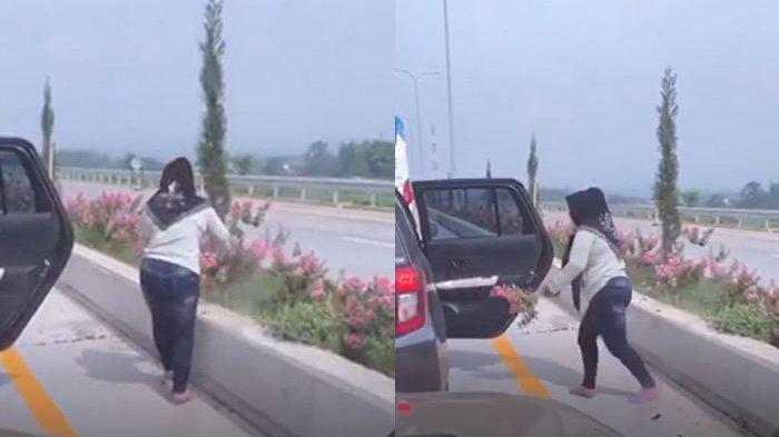 Detik-detik Perempuan Embat Bunga di Exit Tol Pandaan-Malang, Buru-buru Masuk ke Mobil