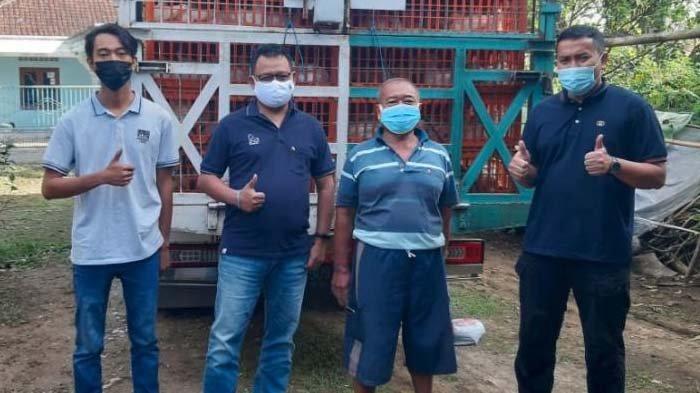 Peternak Ayam Potong di Blitar Mengaku Senang saat Harga Anjlok, CPI Beli 1.300 Ekor Segini Harganya