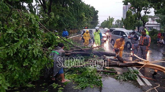 BPBD Jatim : Cuaca Ekstrim Sepanjang 2019, 459 Bencana Alam Telah Terjadi di Jawa Timur