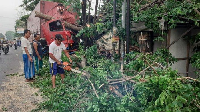 Sopir Ngantuk Berat, Truk Muatan Tembakau Asal Kediri Tabrak Pohon di Mojokerto