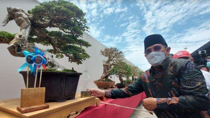 Bisnis Bonsai Tetap Eksis saat Pandemi, PPBI Sidoarjo Gelar Pameran di Sun City Biz Arteri Porong