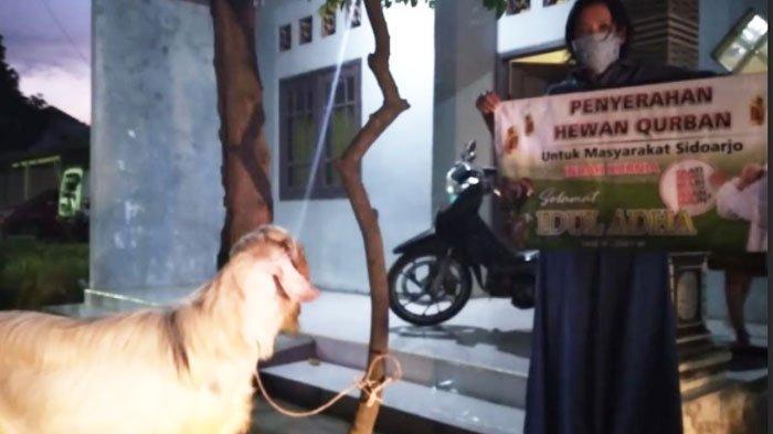 Anggota DPR RI Indah Kurnia Bagikan Puluhan Ekor Kambing untuk Warga Surabaya dan Sidoarjo