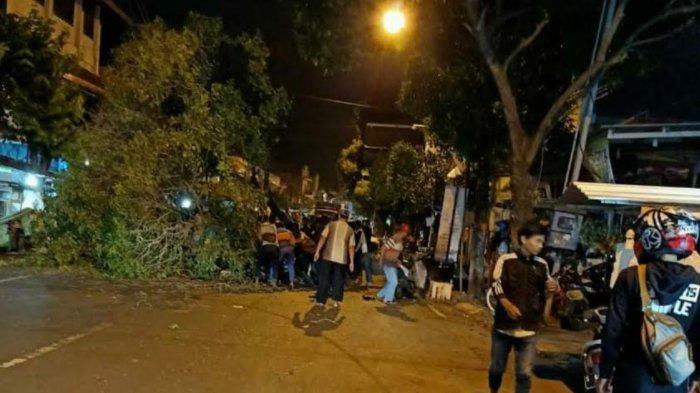Angin Kencang dan Hujan Deras, Pengendara Motor Tewas Tertimpa Pohon Tumbang di Kota Mojokerto