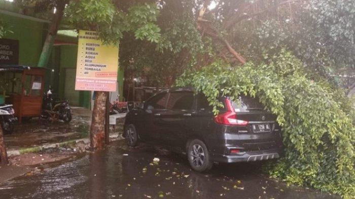 Mobil Ertiga Tertimpa Pohon Tumbang di Pasar Bareng Malang