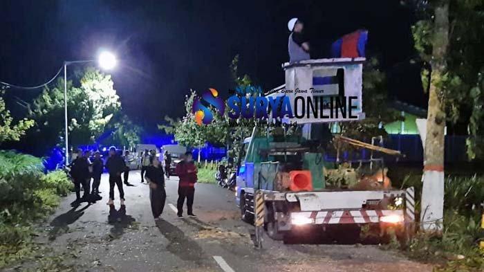 Pohon Tumbang Makan Korban, Ini yang Dilakukan DLH Kota Blitar Antisipasi Angin Kencang