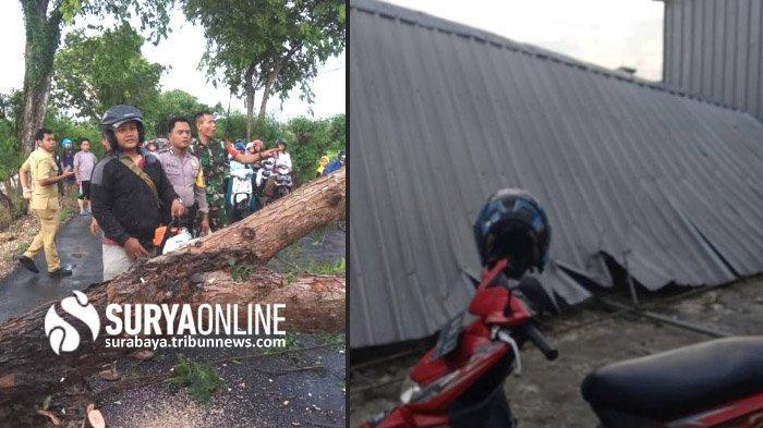 Akibat Hujan Deras danAngin Kencang di Lamongan, Satu Tumbang, 5 Bangunan Porak Poranda