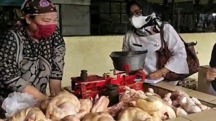Populasi 19,7 Juta Ayam Broiler Jamin Stok selama Ramadhan, Tetapi Harga di Mojokerto Masih Mahal