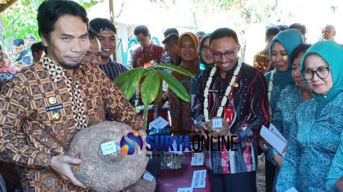Sukses Budidaya Porang, Desa Kepel Kabupaten Madiun Lolos Nominasi 4 Besar Desa Terbaik di Jatim