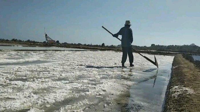 Harga Masih Merosot, Target Produksi Garam Sampang Malah Digenjot