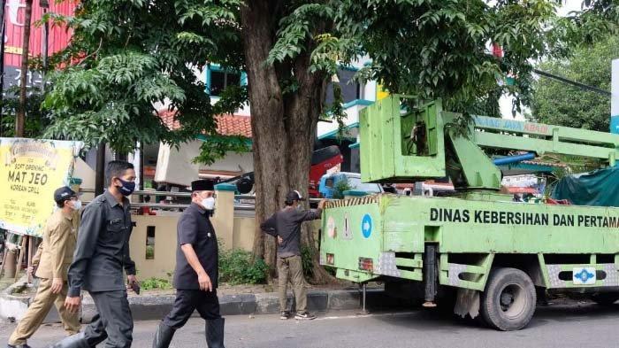 Pj Bupati Sidoarjo Pimpin Penebangan Pohon Tua di Depan PLN, Antisipasi Roboh Ganggu Jaringan