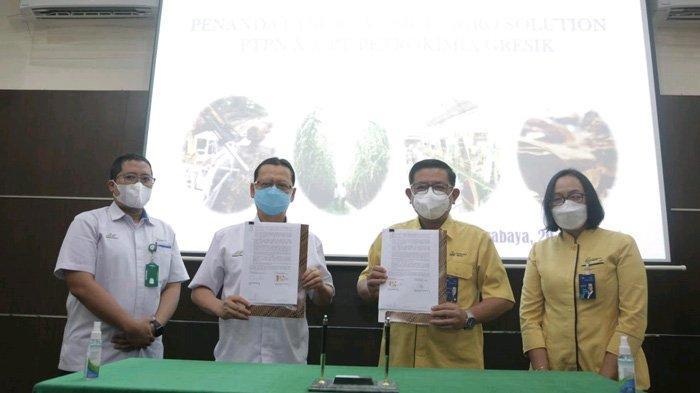 Berdayakan Petani Tebu, PTPN X Buat Kesepakatan dengan PT Petrokimia Gresik