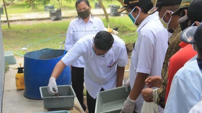 PT PN XI Gelar Pelatihan Budidayakan Cacing Tanah,Berdayakan Masyarakat6 Desa di Masa Pandemi