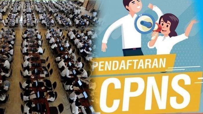 Rincian Jumlah Pelamar CPNS 2019 Sudah Bisa Diakses di sscn.bkn.go.id, Berapa Jumlah Pesaingmu?
