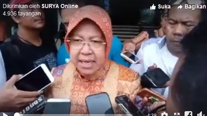 VIDEO - Surabaya bakal Punya Kebun Raya Mangrove Pertama Kali di Indonesia