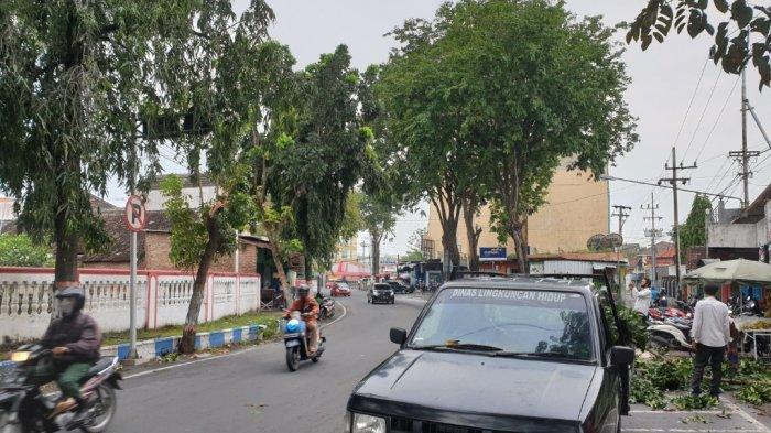 Petugas DLH saat mengevakuasi pohon Mahoni yang tumbang dan menimpa pengendara motor di Jalan Raya Mojopahit, Kelurahan/ Kecamatan Kranggan, Kota Mojokerto, Rabu (7/4/2021).Surya.co.id/Mohammad Romadoni