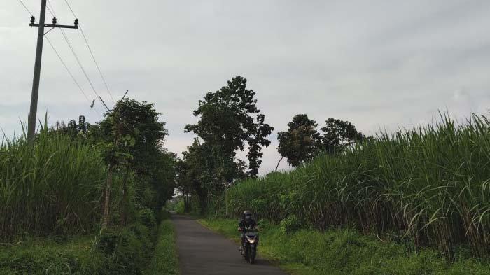 Sejumlah Ruas Jalan Kabupaten di Bondowoso Minim Penerangan, Warga Ekstra Hati-hati saat Melintas