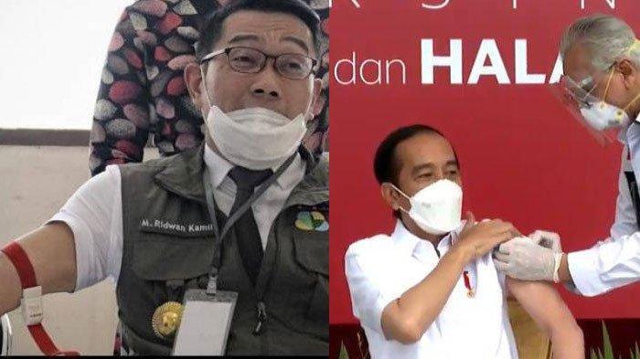 Sama-sama Disuntik Vaksin Sinovac, Jokowi Tak Rasakan Efek Samping dan Ridwan Kamil Mengalami ini