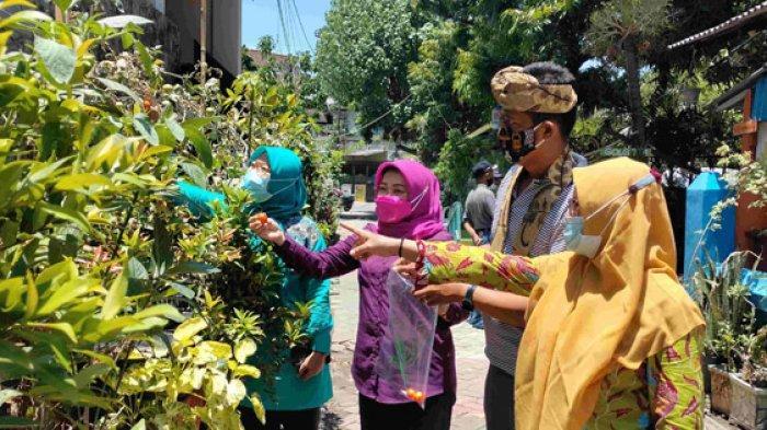 SDN Jajar Tunggal III Surabaya Belajar Penghijauan dari Kampung Sayur Demi Jadi Sekolah Adiwiyata