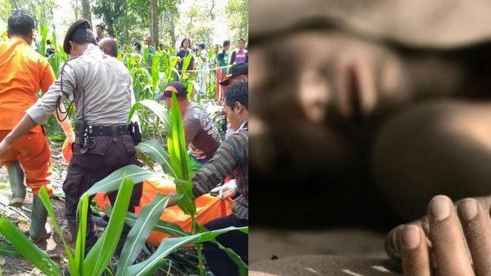 Sebelum Heboh Penemuan Mayat Wanita Tanpa Busana di Kebun Jagung Ngawi, Berikut 3 Kasus Serupa