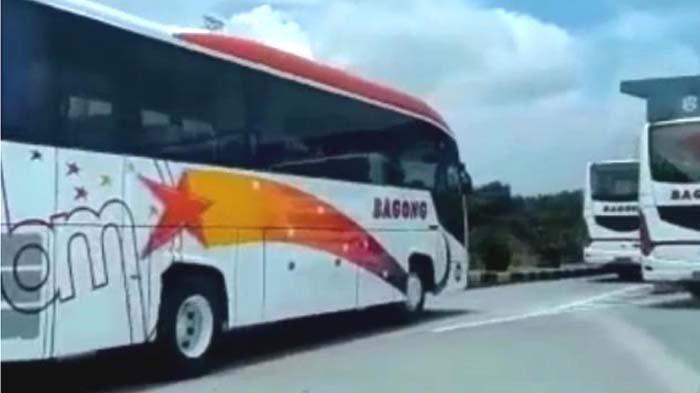 Lebih Nyaman, PO Bagong Siapkan 42 Unit Bus Besar Baru, Surabaya - Tulungagung Cukup Rp 25.000