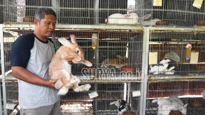 Sambang Kampung RT 2 RW 8 Medokan Ayu Surabaya, Ubah Hutan Kampung Jadi Wisata Edukasi