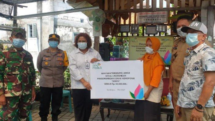 Usaha Tingkatkan Perekonomian Masyarakat, PLN Bantu Hidroponik Komunitas Serpis Surabaya