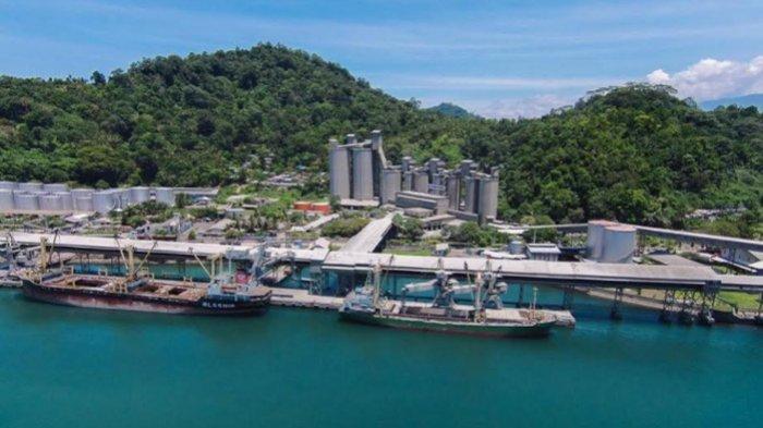 Semen Indonesia Masih Laba Rp 2,79 Triliun saat Pandemi, Berkat Keberhasilan Membuka Jalur Ekspor