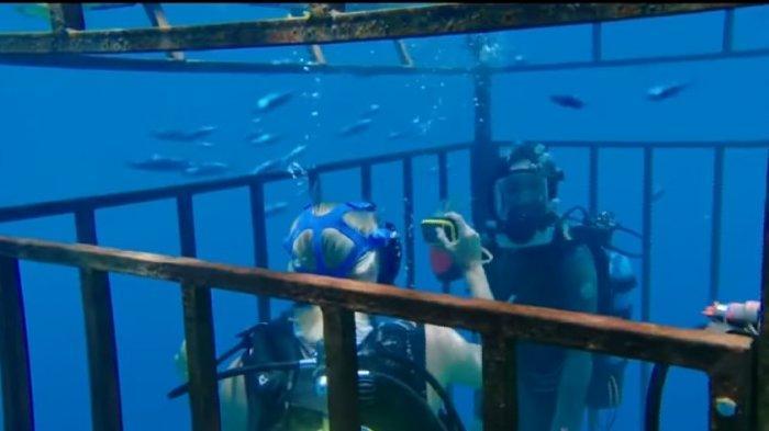 Sinopsis Film 47 Meters Down di Bioskop Trans TV Malam Ini Jam 21.30 WIB Terjebak di Dasar Laut