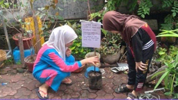Lomba Menanam Sukun Ikon Sekolah di SMPN 15 Kota Surabaya