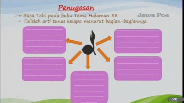 Soal SD kelas 3 Arti Tunas Kelapa Pramuka