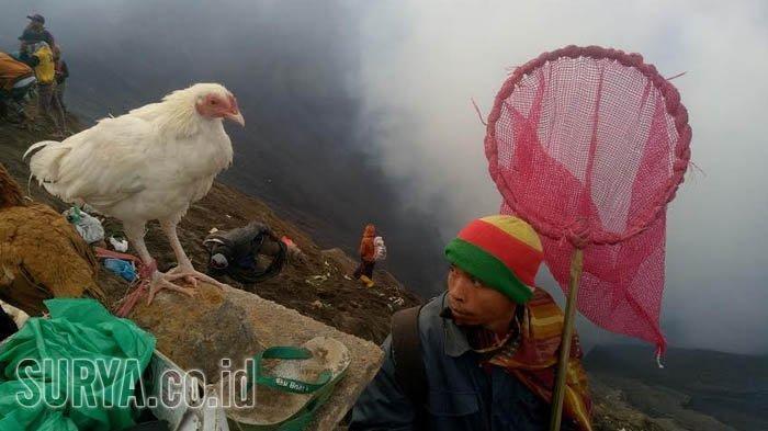 Ada Upacara Yadnya Kasada, Wisata Gunung Bromo Ditutup Selama Tiga Hari, Catat Tanggalnya