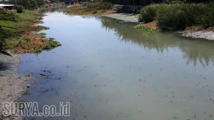 Pendangkalan dan Penyempitan Sungai di Sidoarjo Kian Memprihatinkan