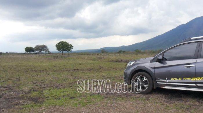 Taman Nasional Baluran Kabupaten Situbondo Dibuka Kembali, Wisatawan Wajib Bawa Hasil Rapid Test