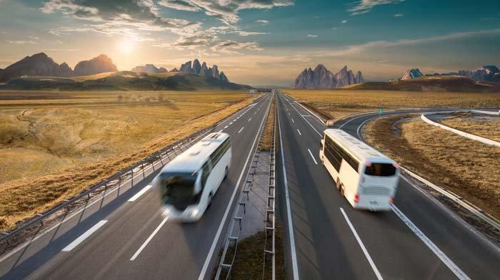 Balik Liburan Naik Bus? Inilah 5 Kelebihannya Dibanding Pakai Kendaraan Pribadi!