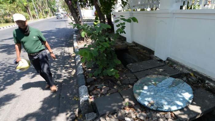 Trotoar di Jalan Dr Soetomo Surabaya Rusak Parah karena Akar Pohon, Pejalan Kaki Kerap Tersandung