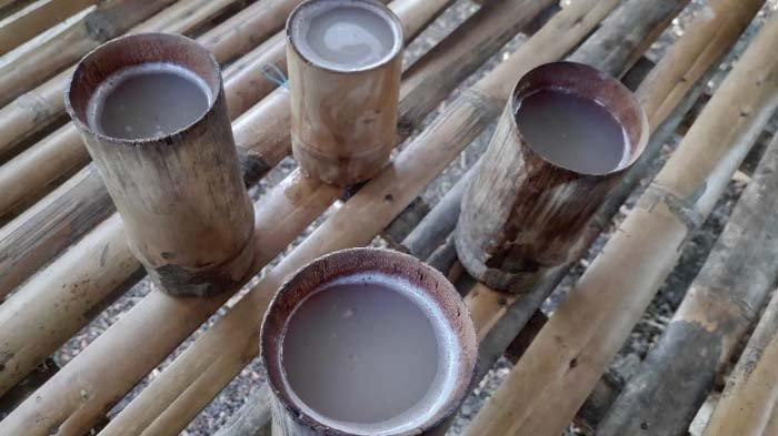 Cara Bedakan Legen dan Tuak, Minuman Khas Kabupaten Tuban, Kenali Waktu Memanennya