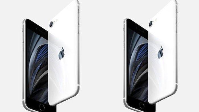 Update iPhone Hari ini 16 April 2020, iPhone SE 2 Resmi Meluncur, Berikut Harga & Spesifikasinya