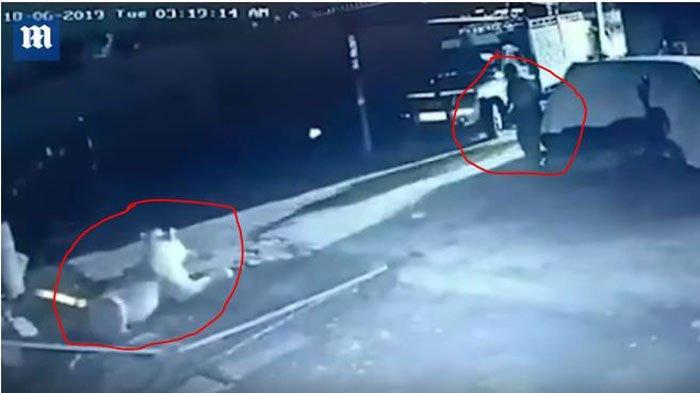 Video Detik-detik Pria Nekat Pukul Singa Buas Demi Selamatkan Anak Sapinya, Cuma Pakai Tongkat Kayu
