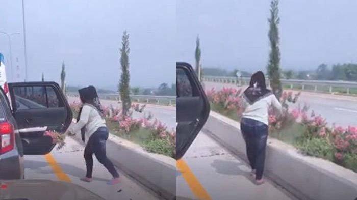 VIDEO VIRAL Wanita Berkerudung Curi Bunga Pink di Pembatas Exit Tol Singosari, Ini Kata Jasa Marga