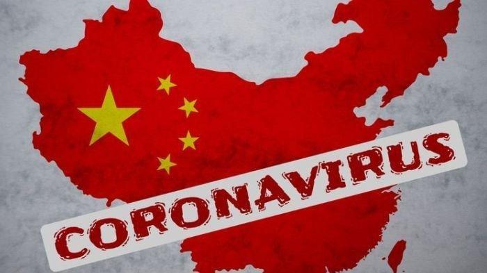 Dugaan Konspirasi Virus Corona dan Hasil Riset WHO di Wuhan China, Ada Fakta 'Mengerikan' yang Luas