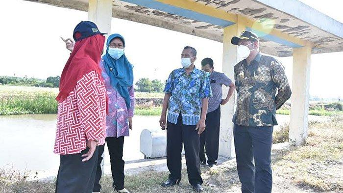 Pendangkalan Sungai Ganggu Pengairan Pertanian di Sidoarjo, Wabup Subandi Perintahkan Normalisasi