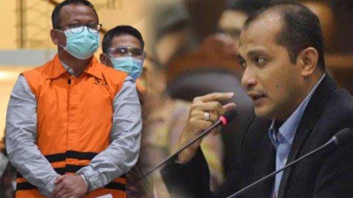Profil dan Biodata Eddy Hiariej, Wamenkumham yang Sebut Edhy Prabowo dan Juliari Layak Dihukum Mati