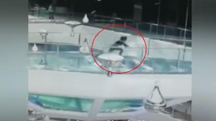 Detik-detik Menegangkan saat Wanita Tercebur ke Kolam Berisi Hiu jadi Viral, Begini Nasibnya