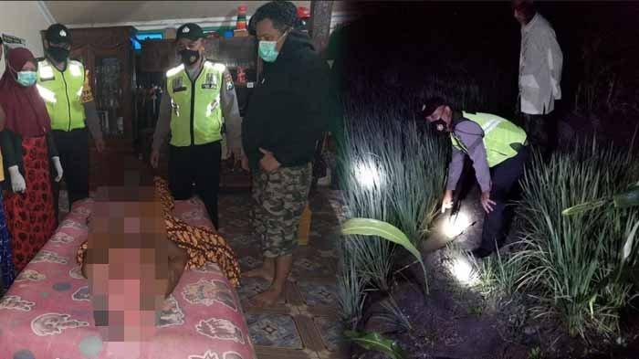 Warga Desa Gumantuk Lamongan Tewas Tersetrum Jebakan Tikus yang Dipasang di Sawahnya