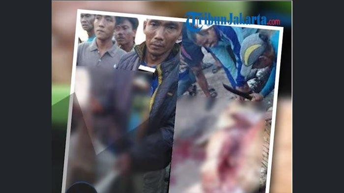 HEBOH! Warga Riau Belah Perut Buncit Buaya & Temukan Potongan Tubuh Manusia, Diduga Milik Pria ini